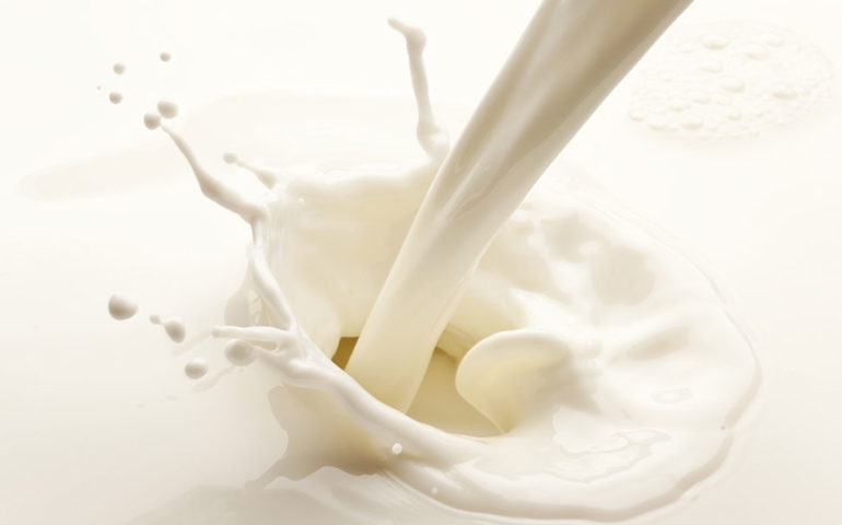 milk splash stock image